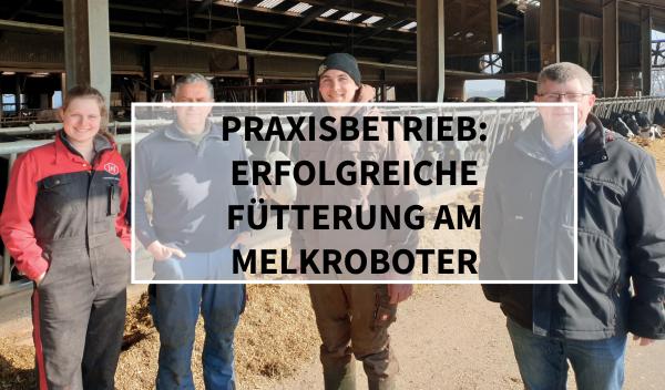 Sano24_Blog_Beitrag_Teaser_Praxisbetrieb_Erfolgreiche_F-tterung_am_Melkroboter_Betrieb_Feldhaus