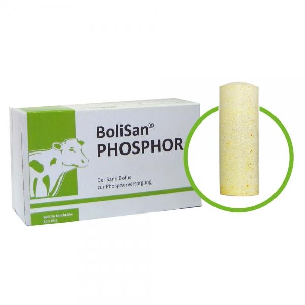 BoliSan® PHOSPHOR Produktbild - Bolus zur Abkalbung von Rindern mit Phosphor | Sano Veterinär
