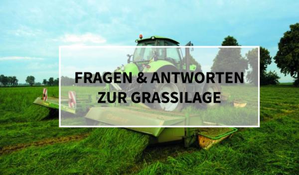 Sano24_Blog_Beitrag_Teaser_Fragen_Antworten_Grassilage