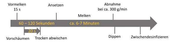 Sano24_Grafik_Prozess_optimierter_Melkprozess_Ablauf