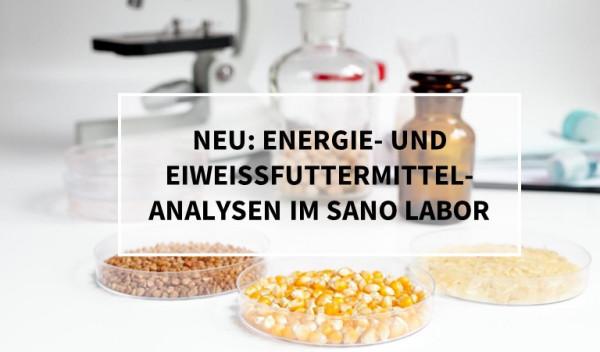 blogbeitrag_neue-Analysen_Labor_Eiweiss_