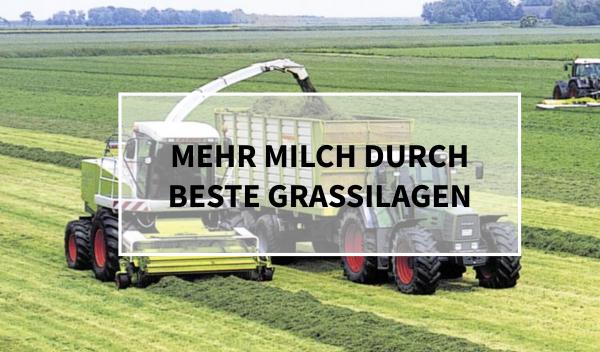 Sano24_Blog_Beitrag_Teaser_Mehr_Milch_durch_beste_Grassilagen