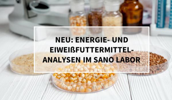 blogbeitrag_neue-Analysen_Labor_Eiweiss_IOThd8Ta6o93O