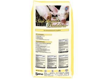 SanAmmat Puddino® Produktbild - Der Brei für Saugferkel | Sano