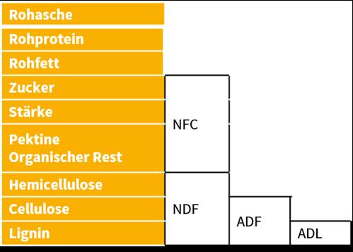 Sano24_Blog_Beitrag_Grafik_Faser_im_Futter_verstehen_Verdaulichkeiten