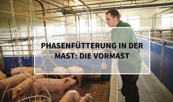Phasenf-tterung_Vormast_Schweine