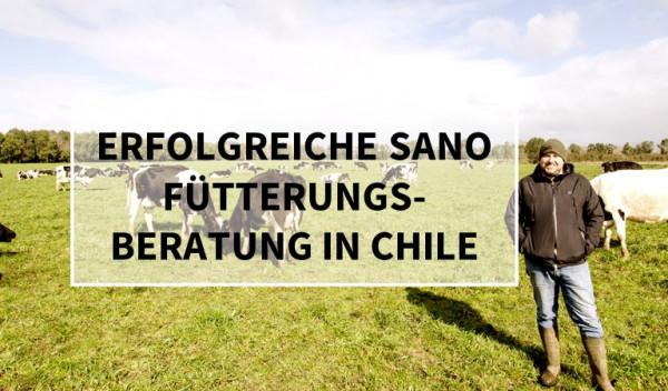 erfolgreiche-Sano-F-tterungsberatung-in-Chile