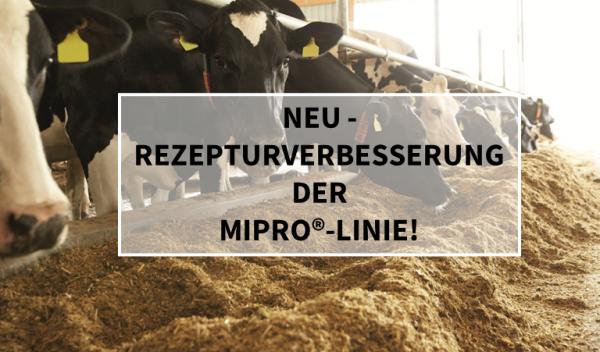 Blog_Mipro_Rezeptverbesserung_