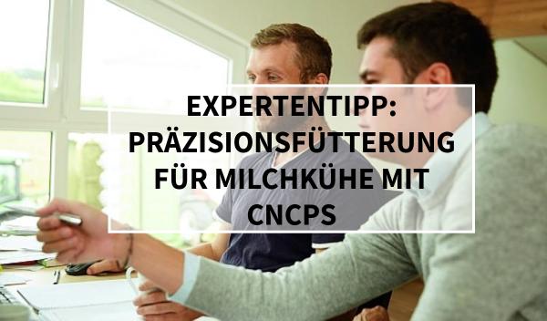 Sano24_Blog_Beitrag_Teaser_Pr-zisionsf-tterung_f-r_Milchk-he_mit_CNCPS